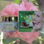Ночной крем для лица Night Snail Cream With Collagen & Elastin