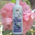 Шампунь для волос Анчан Abhai Butterfly Pea Shampoo 300 мл.