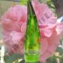 Гель для душа с Алоэ Вера Aloe 92% Shower Gel