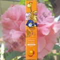 Детская зубная паста Апельсин Giffy Farm Toothpaste Orange