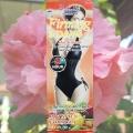 Крем для похудения Pannamas Firming Hot Cream 100 гр.