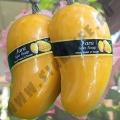 Мыло ручной работы Манго Fara Spa Soap Mango
