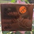 Крем для лица с секретом улитки Snail Care Cream