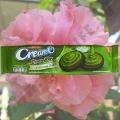 Шоколадное печенье с Зеленым Чаем Choko Plus Green Tea