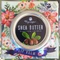 Бальзам для губ с маслом Ши Organique Shea Butter Lip Balm