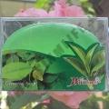 Мыло с зеленым чаем Greentea Soap